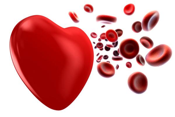 Лейкоз – раковое заболевание крови